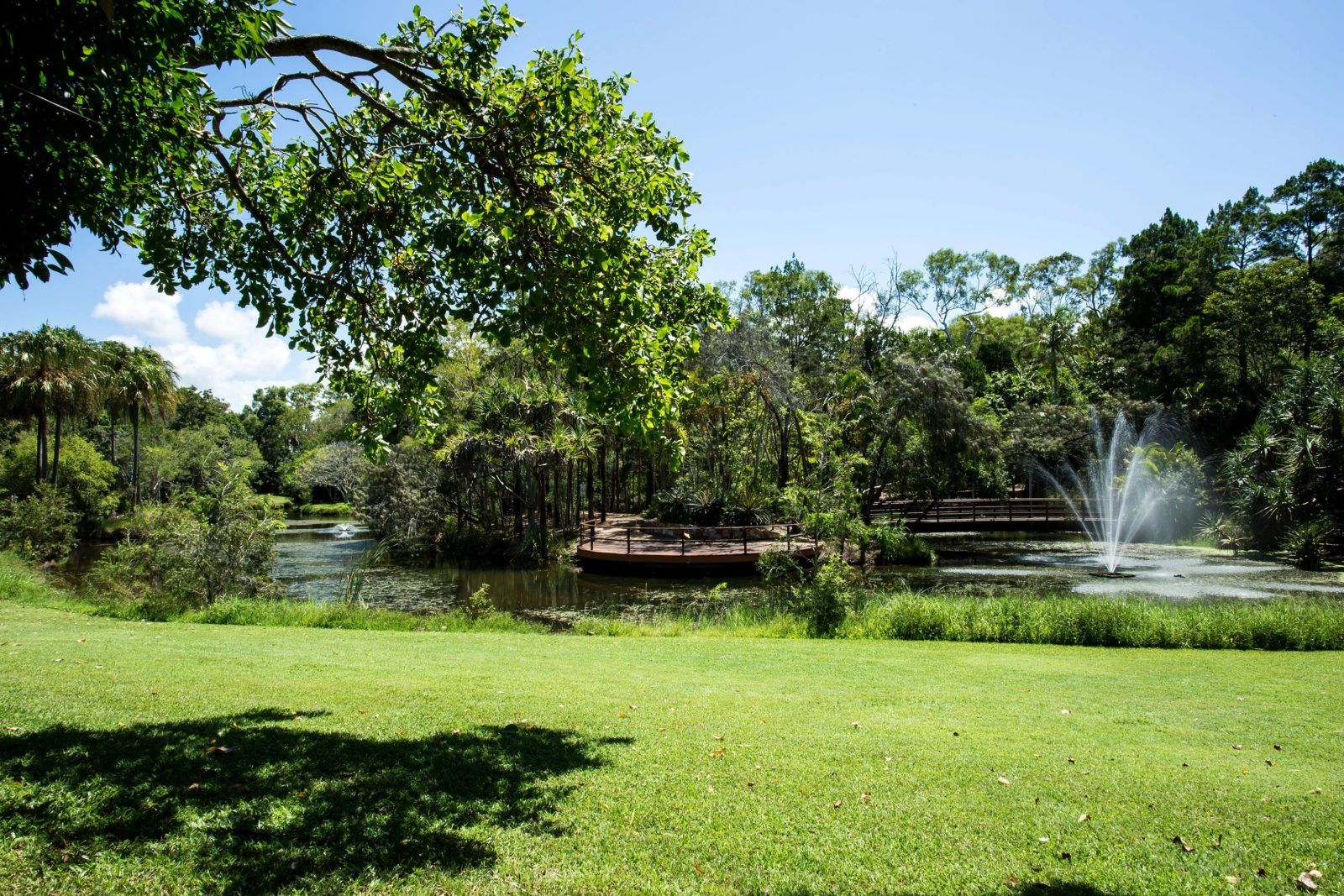 photo showing the wetland area with fountain spraying water into the air