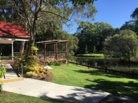 photo showing the front seating area of Orchid House in the Hervey Bay Botanic Gardens