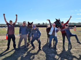 Equine Assisted Learning helps families to have fun and engage with each other