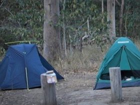 Two tents set up in the Middle Kobble Creek Bush Camp