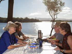 Two elderly couples sitting at a picnic table beside Lake Samsonvale eating and drinking tea