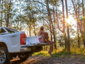 Woman sitting on the back of a 4x4 watching the sunset in Mount Mee Forest Reserve