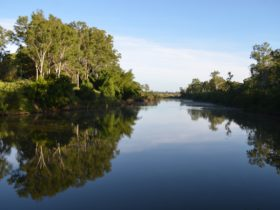 photo showing the Mary River at Tiaro with a calm reflective surface and lined by trees