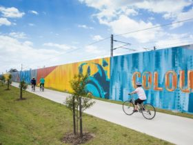 Art works lining the pathways of the Petrie to Kippa-Ring Shared Pathway