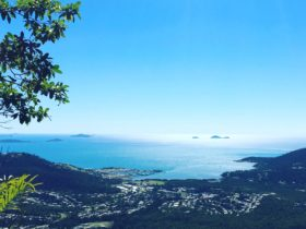 View from Great Whitsunday Walk