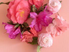 Camellias and Azaleas