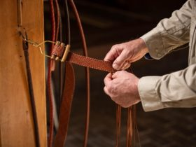 Leatherplaiting Workshop (Three Days)