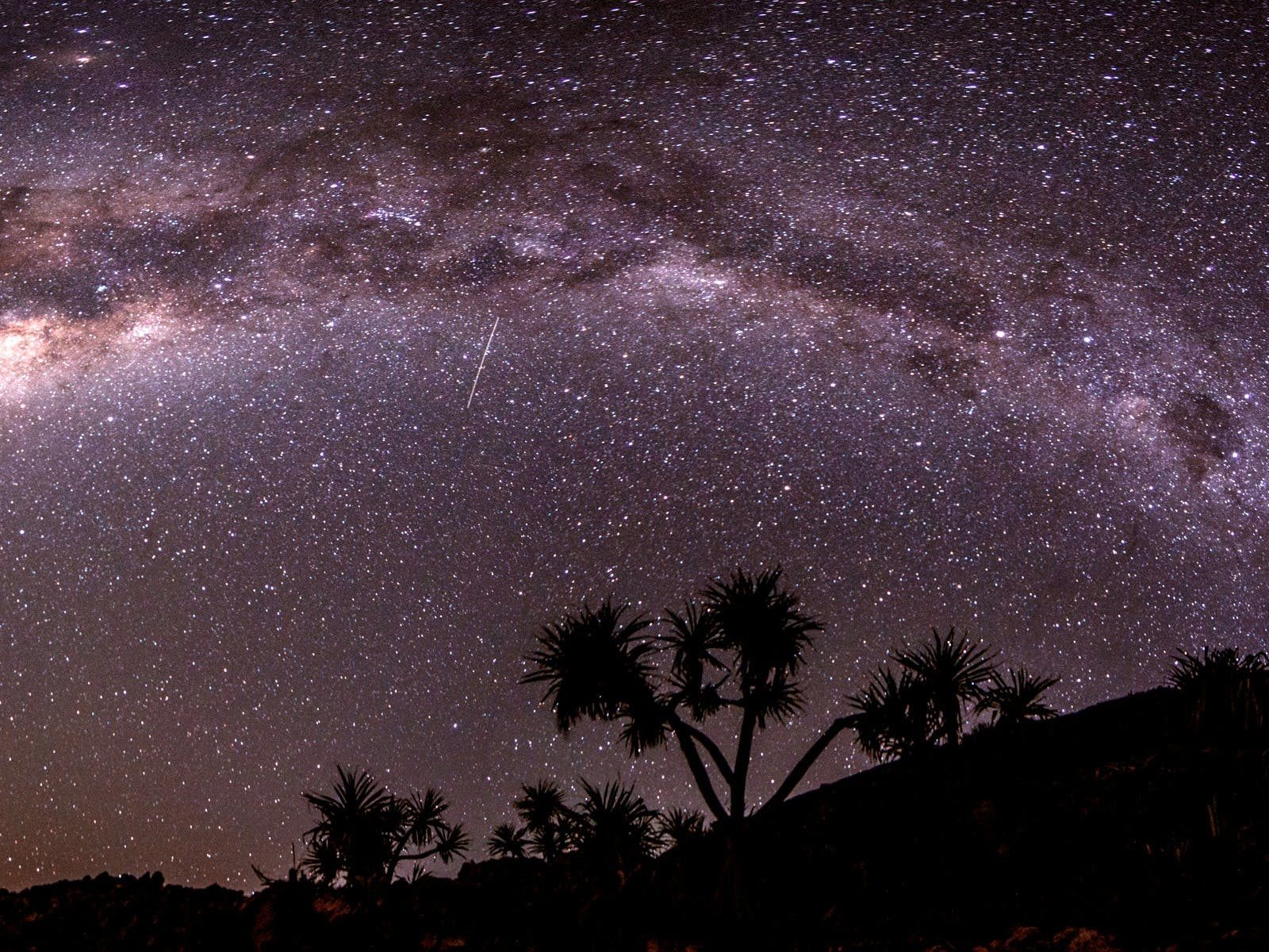 The Milky Way sits over pandanus palms during a clear new moon over Adder Rock at Point Lookout.