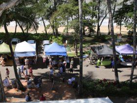 Palm Cove Markets 1
