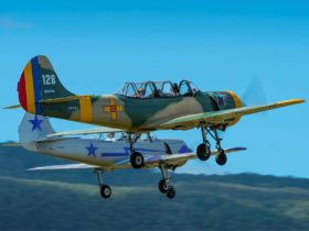 Formation fly pasts & Aerobatic Displays