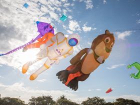 Large bear, astronaut and sting ray kites flying in the sky