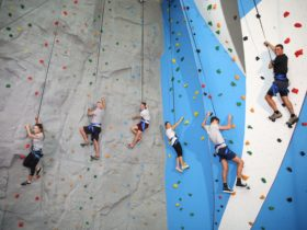 6 people in harnesses climbing an indoor rock climbing wall