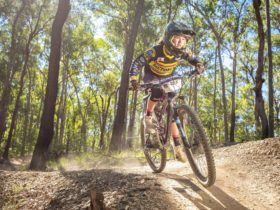 Youth mountain biking