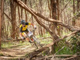 Cross-country racing with Rocky Trail.