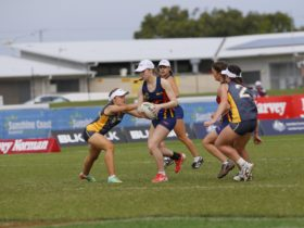 2016 Touch Football Australia Harvey Norman National Youth Championships