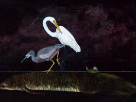 Lung fish swims with a blue heron, egret, frog and turtle on his back