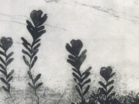 Jen Conde, Seaweed garden (detail) 2018, intaglio on paper. Courtesy of the artist.