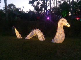 Lantern inshore of a dragon