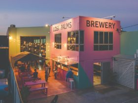 Lost Palms Brewery Miami