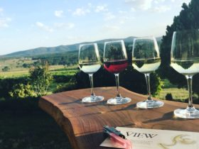 enjoy View Wine from the deck of the accommodation at Sancerre Estate