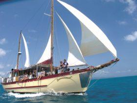 Whitsundays Sailing Adventuers - Sailing Whitsundays