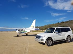 Land on Fraser Island and collect your 4wd hire vehicle.