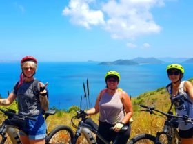 Come ride the only mountain bike trail in the Whitsunday Islands National Park.