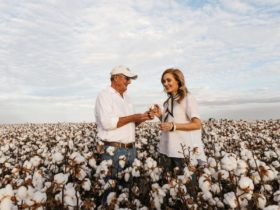 Goondiwindi Cotton Tours