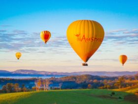 Hot Air Balloon Gold Coast flying over the Gold Coast Hinterland