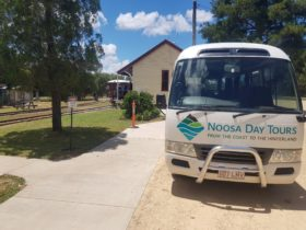 noosa day tour bus