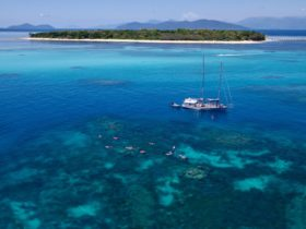 Ocean Free – Sail to Green Island & the Great Barrier Reef