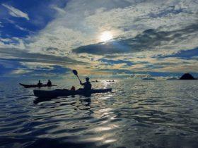 Early morning kayak tour