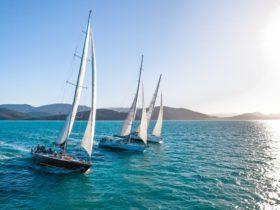 Prosail fleet