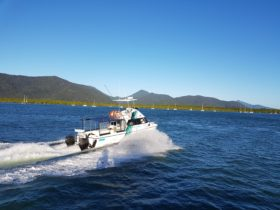 Reef Runner Charets