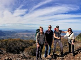 Scenic Rim - Lammington National Park 3-Day Pack-Free Guided Walk from Life's An Adventure