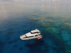 Seastar Cruises Cairns