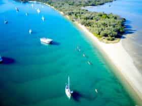 Kayaking though the crystal waters of Wave break Island, Gold Coast
