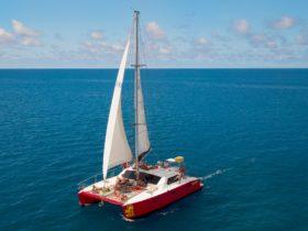 Tongarra Day Sail