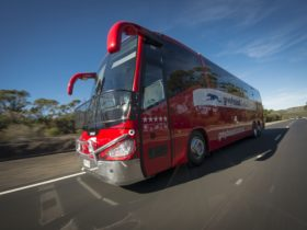 Greyhound Australia Coach