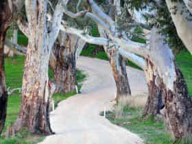 winton road