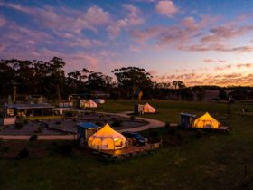 Bukirk Glamping, Clare Valley
