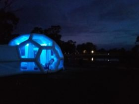 Bubbles at night