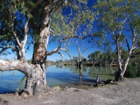 Loch Luna and Moorook Game Reserves