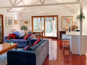 A light, open plan living room and kitchen. The room has big windows looking out onto the vines