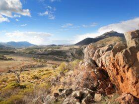 Looking north across Pichi Richi Park, towards Dutchman's Stern NP, Flinders Ranges, South Australia