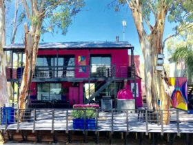 Pink Shack on Murray