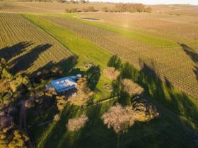 Tumbleweed Cottage Watervale Clare Valley Aerial View