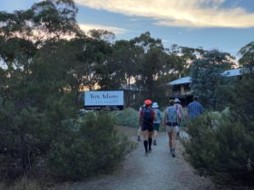 Clare Valley Wine and Wilderness Trail