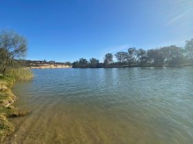Holder Bend view of river from boat ramp towards Waikerie