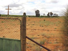 The small cemetery was used prior to the opening of the Bookpurnong Lutheran Church.